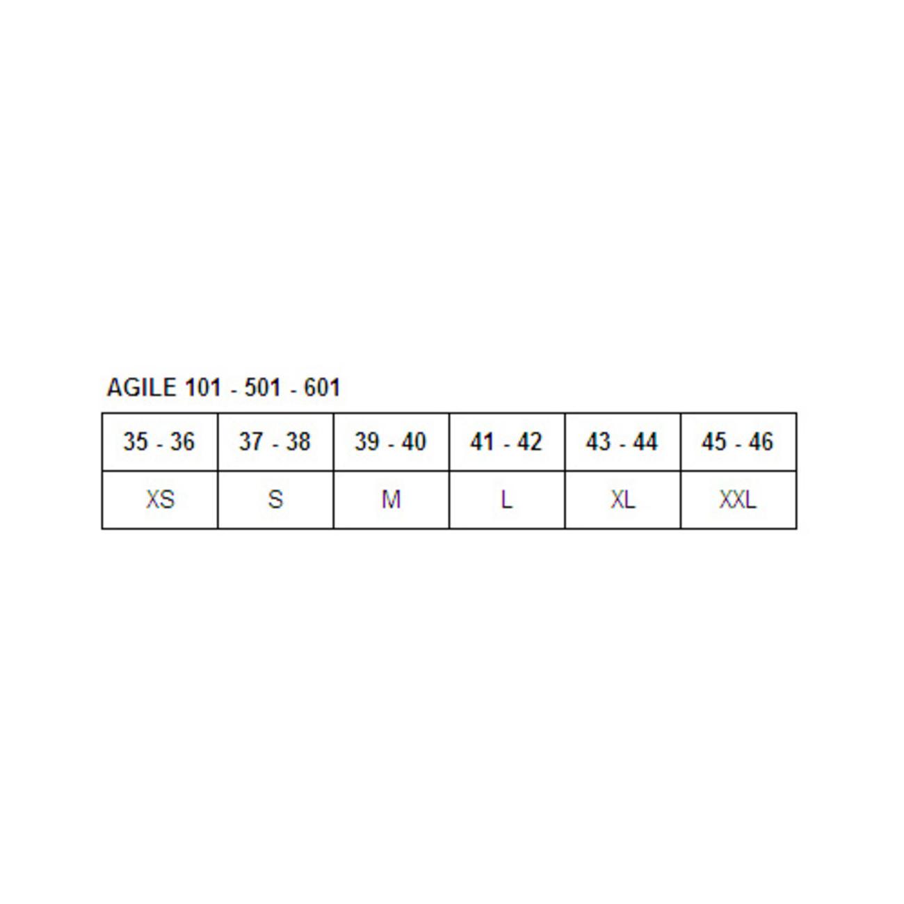 AGILE 101 [正規輸入品]