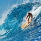 EARTH Surf 6'8 Bonzer